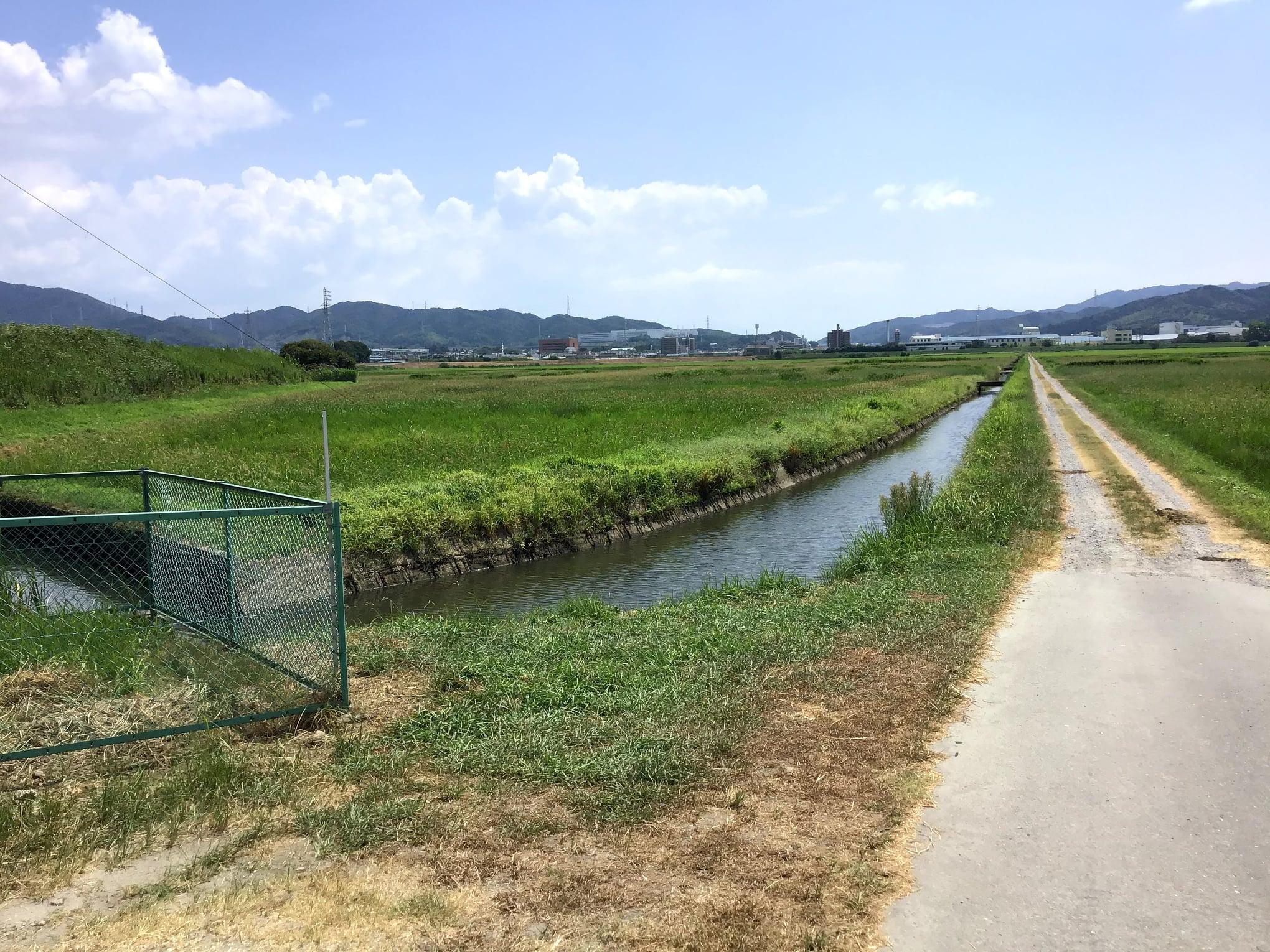 いる『菱池遊水地予定地』の確認をしてきました。  この辺りは昔は菱池という大きな池があり、開墾をして今では広大な水田となっています。写真は『菱池遊水地予定地』と「菱池排水機場」です。現在も2基のポンプがありますが昭和3年製の古いポンプは使用していないようです。 早期の完成に努めます。